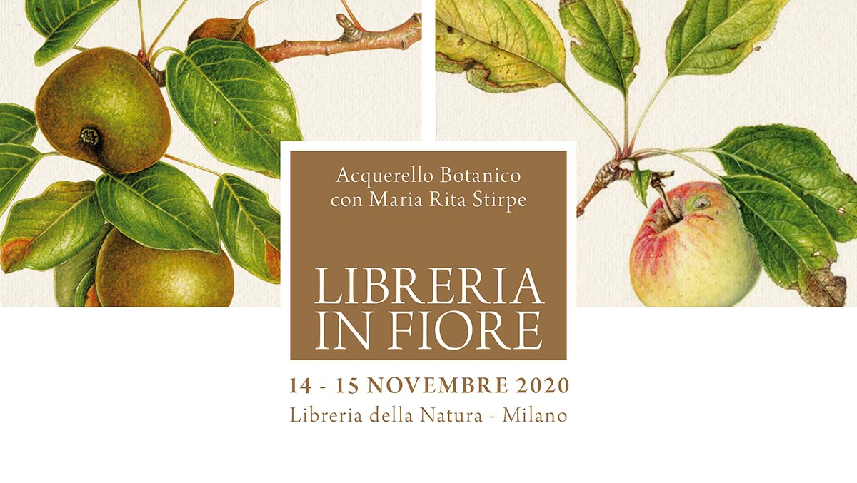 Libreria in Fiore - Milano - Novembre 2020 - Maria Rita Stirpe