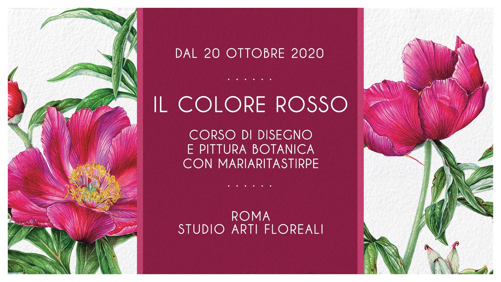 Il Colore Rosso - Maria Rita Stirpe - Studio Arti Floreali