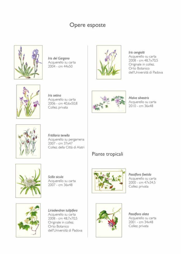 Catalogo - Ars Botanica - Pagina Interna 02