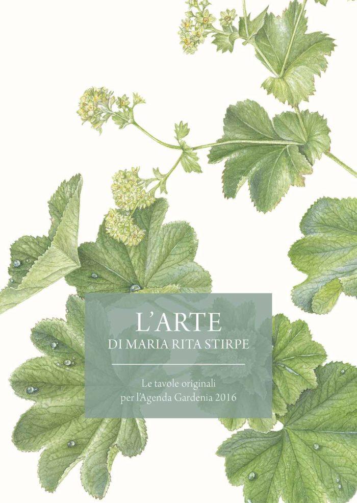 Catalogo - L'Arte di Maria Rita Stirpe - Copertina