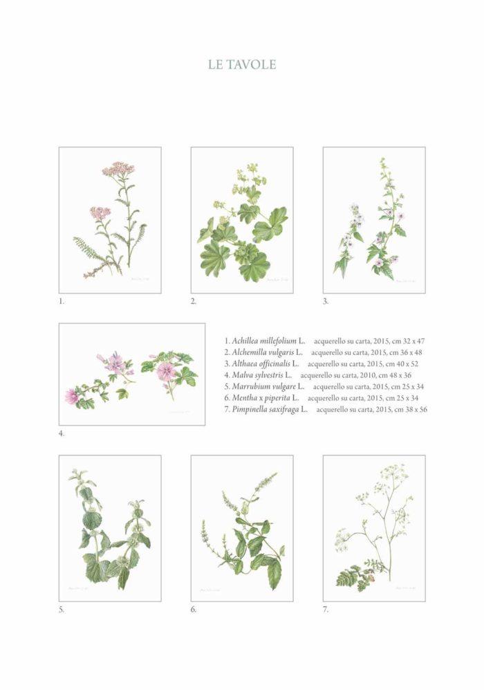 Catalogo - Arte di Maria Rita Stirpe - Pagina Interna 01