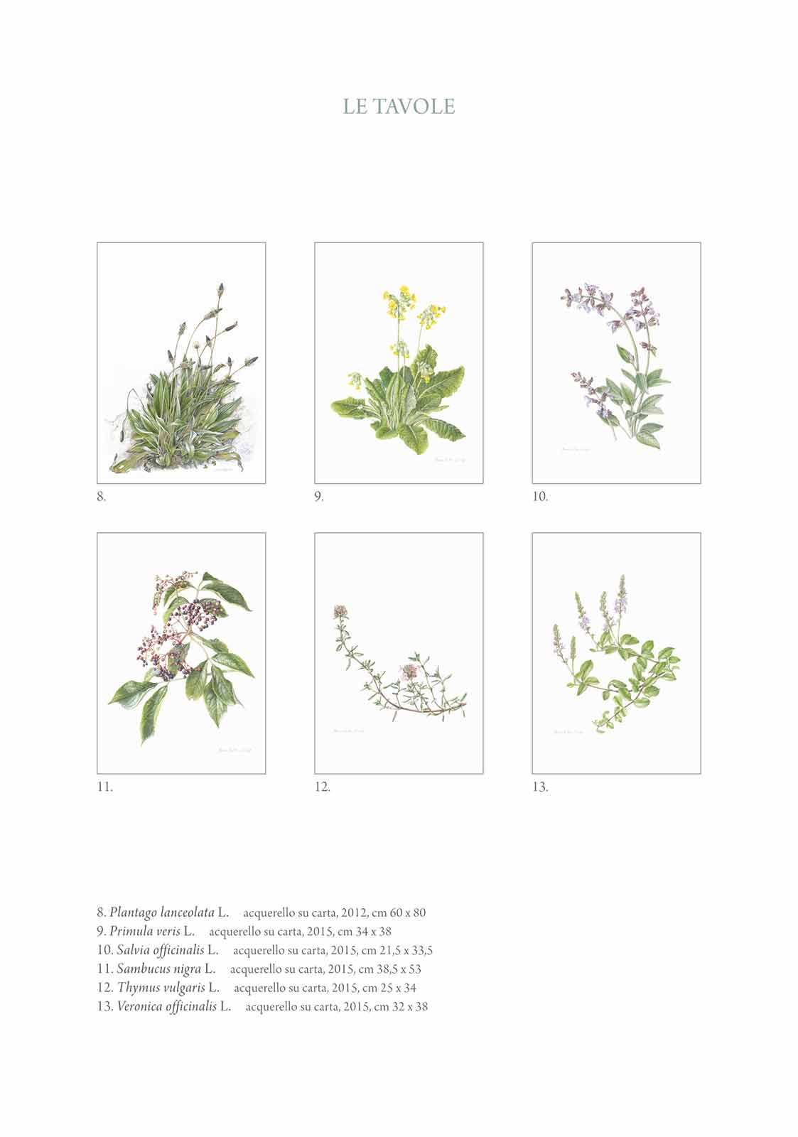 Catalogo - Arte di Maria Rita Stirpe - Pagina Interna 02