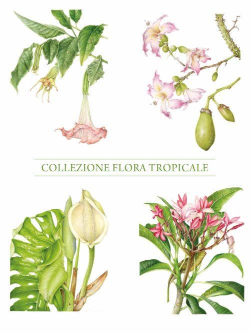 Stampa - Collezione Flora Tropicale - Completa