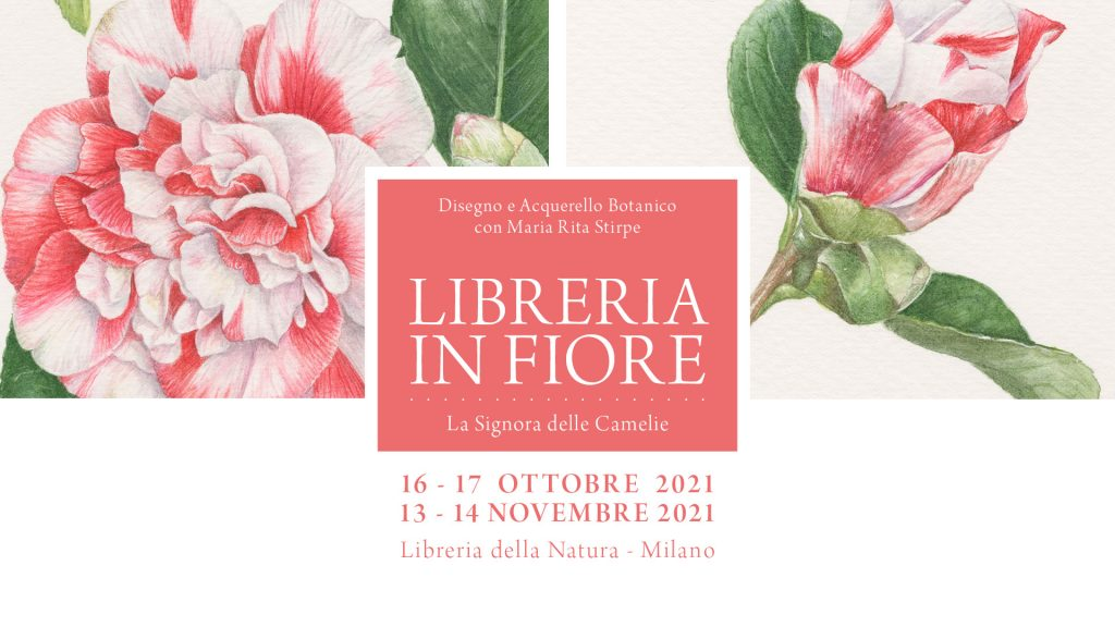 Maria Rita Stirpe - Milano 2021
